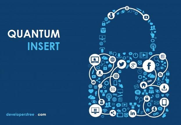 پێشکەوتووترین جۆری هێرشی هاک – Quantum Insert